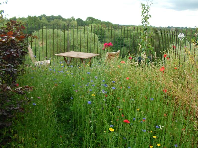 malmesbury-walled-garden-13