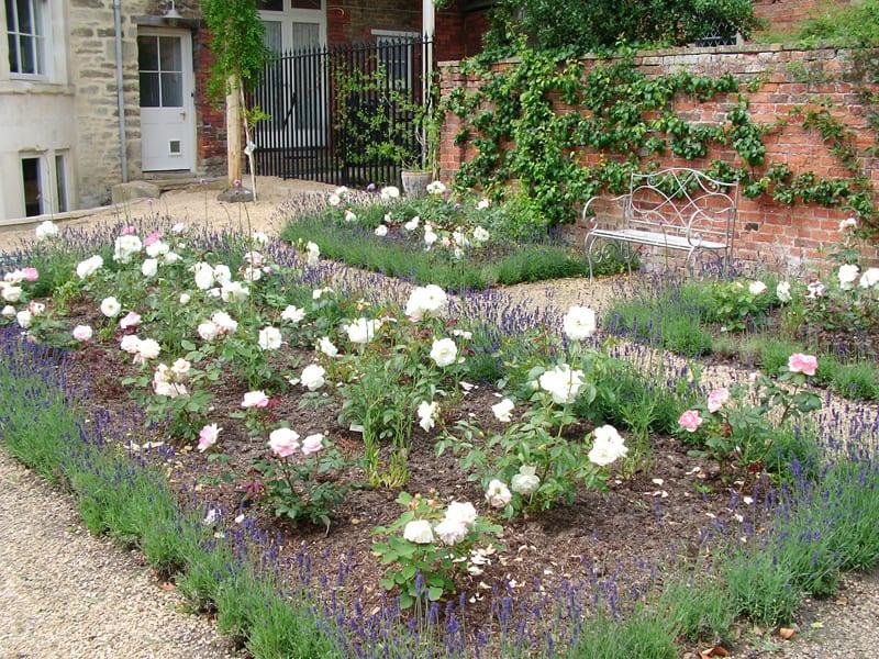 malmesbury-walled-garden-6