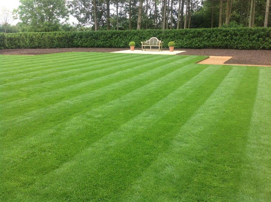 new-lawn-2