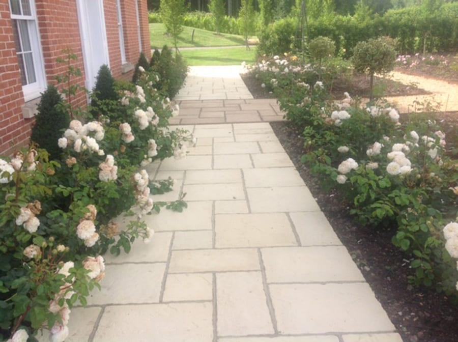 rose-garden-flower-2